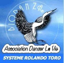 Logo Association Danser La Vie